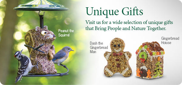 Give the Gift of Bird Feeding